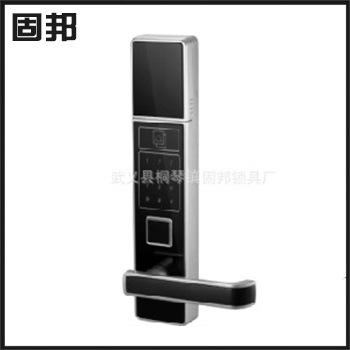 GB-TZMM-0002 Advanced Intelligent electronic security door code lock exterior door panel handle(China (Mainland))