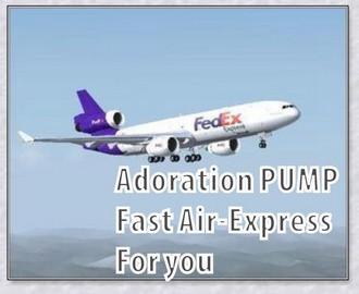 Air Epxress3