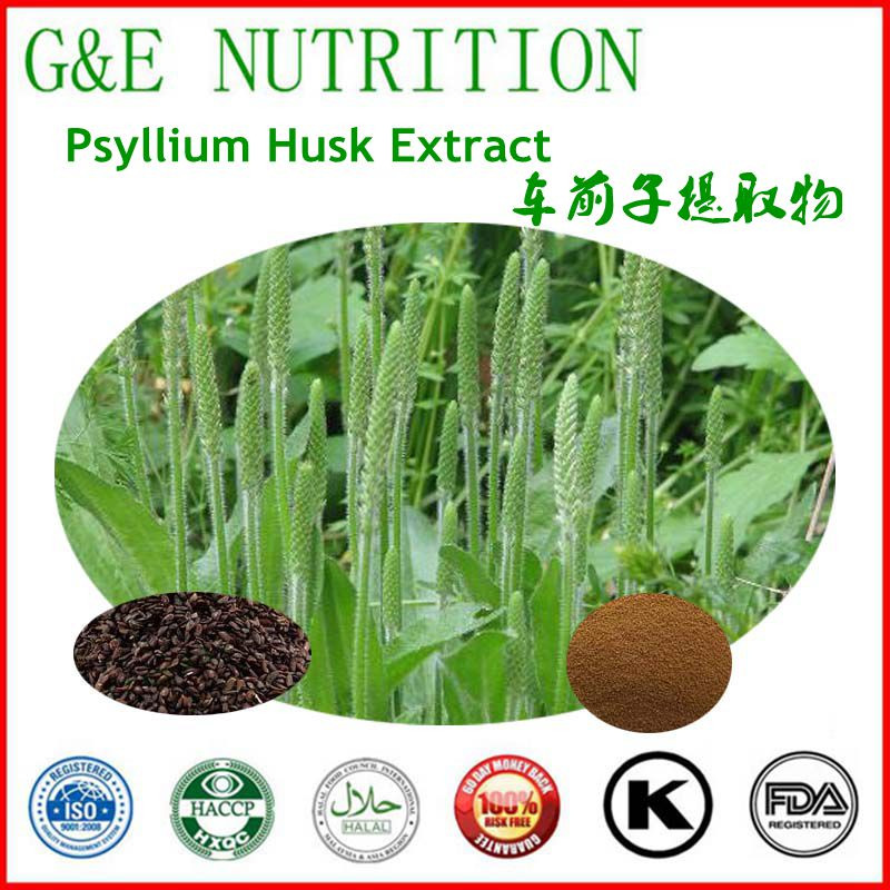 Psyllium Powder Extract 10:1 In Hot Selling 400g<br><br>Aliexpress