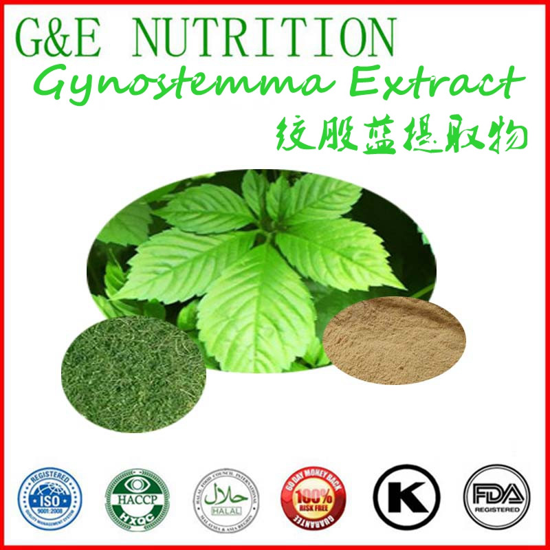 2016 The Most Popular Product for Sliming in The Word Gynostemma Extract 1000g