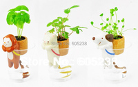 Free Shipping 1Piece Self-Watering Plant Holder Tail Planters / Animal Planters