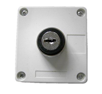 elevator key switches achetez des lots petit prix elevator key switches en provenance de. Black Bedroom Furniture Sets. Home Design Ideas