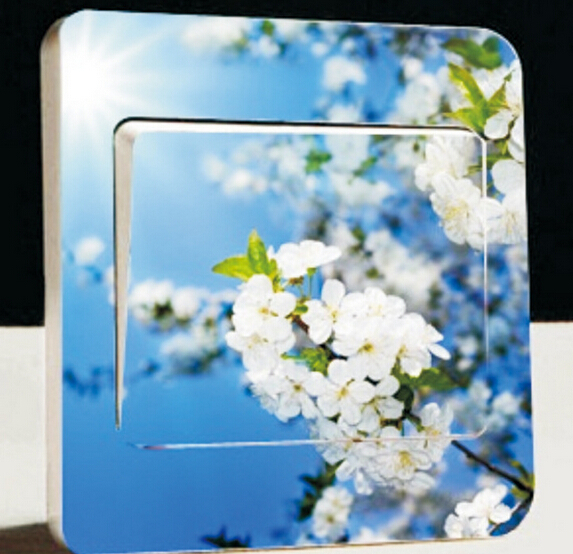 Pastoral style flower Wall stickers Removable Outline Flower Light Switch Vinyl Stickers Wall Decal Art Waterproof Excellent(China (Mainland))