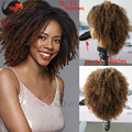 HOT sale afro kinky lace front wigs ombre afro kinky curly virgin hair lace front wigs