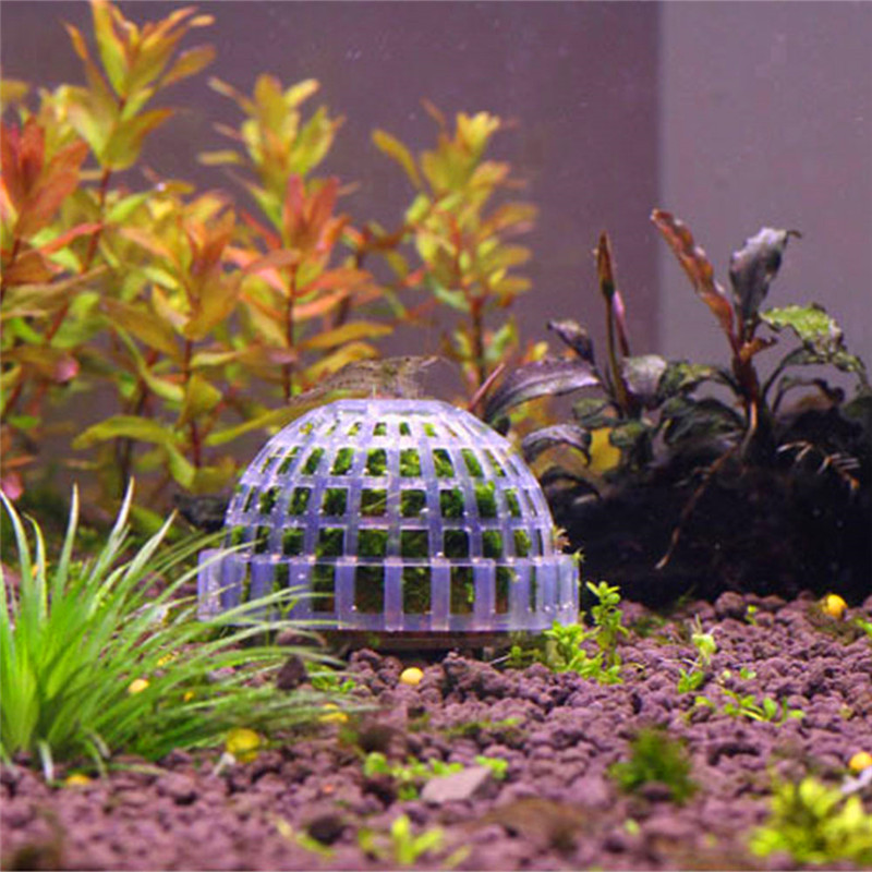 Popular natural aquarium buy cheap natural aquarium lots for Natural fish tank
