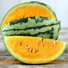 Buy Golden Yellow Large Watermelon Seeds, 20 Seeds/Pack, Delicious Vegetables Fruit Seeds Non-GMO for $1.32 in AliExpress store