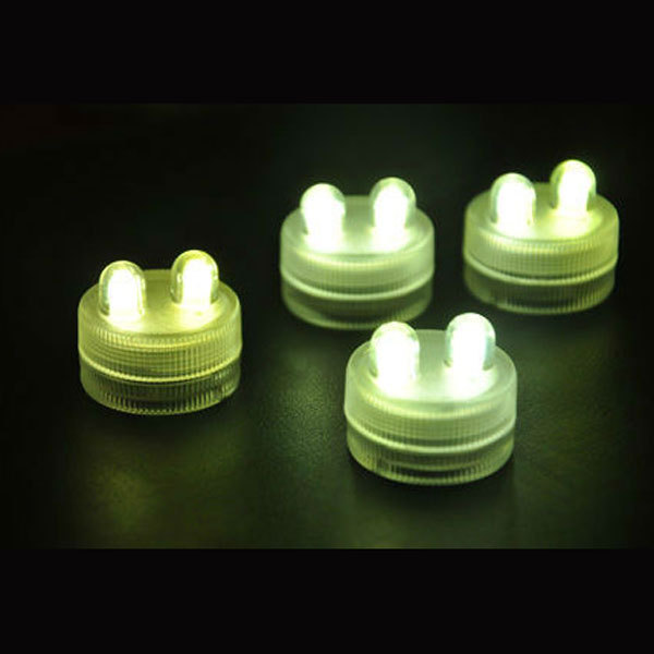 submersible-led-floralyte-light-H