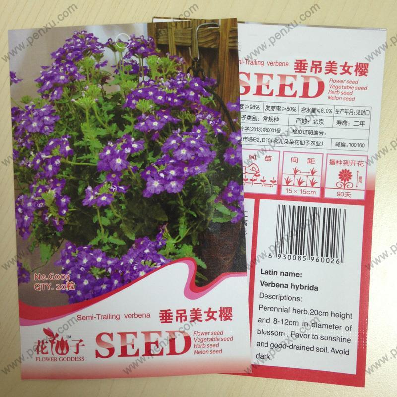 Original package flower seeds, Hanging Verbena semi trailing verbena seeds,mature flowering 90 days, 20 particles seeds / bag(China (Mainland))