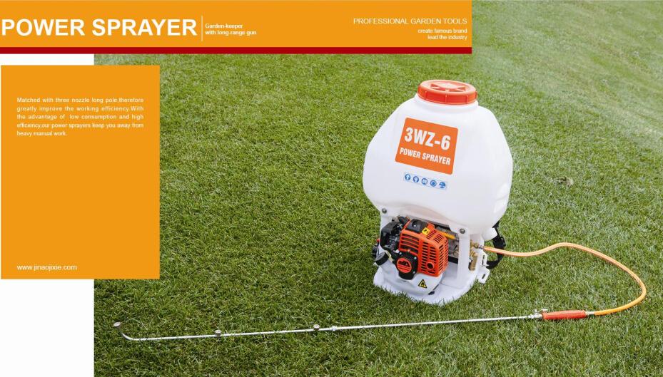 Power sprayer backpack garden sprayer knapsack sprayer gasoline power sparyer 3WZ-6(China (Mainland))