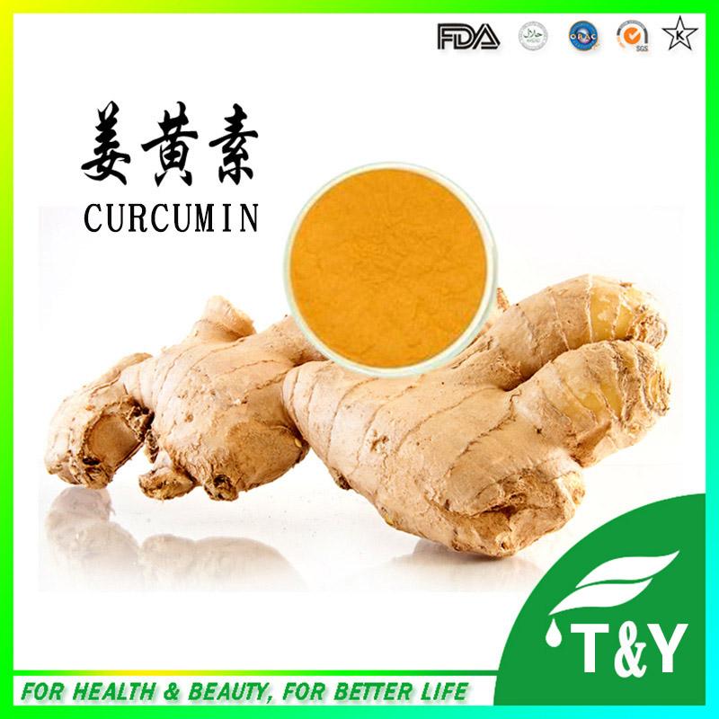 Curcuma Longa Turmeric Extract 95% Curcumin