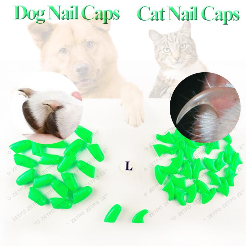 Товары для груминга кошек