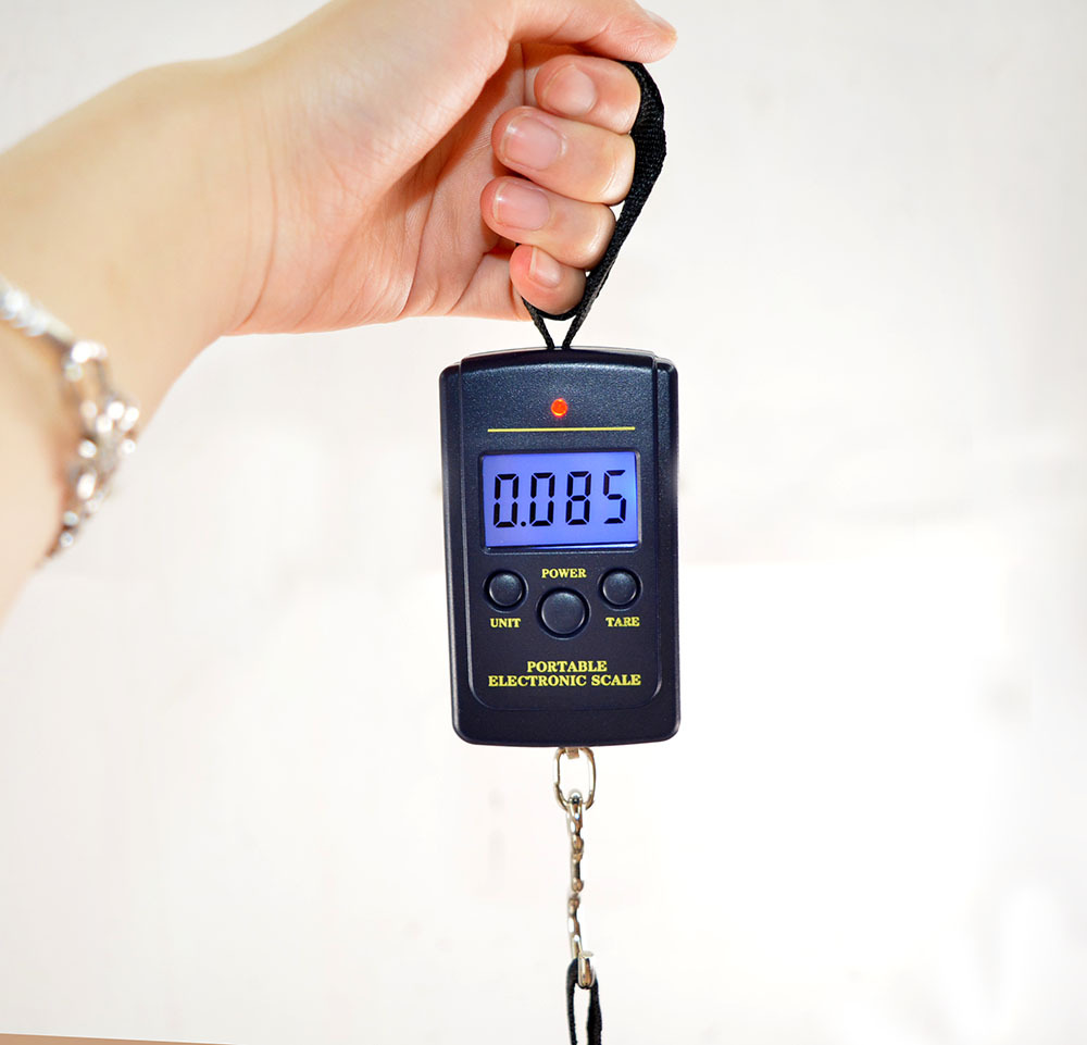Scale Hanging Luggage 40Kg /10g Digital BackLight Fishing Pocket Weight Kg Lb OZ (With Backlight)(China (Mainland))