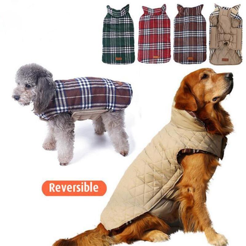 детское термобелье, одежда для собак в парту догс несмотря заурядный внешний