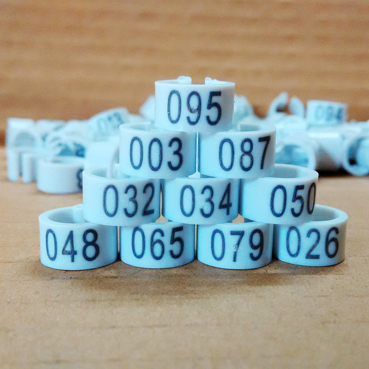 100pcs/lot High-quality digital identification bayonet ring pigeon foot ring inner diameter 8mm(China (Mainland))