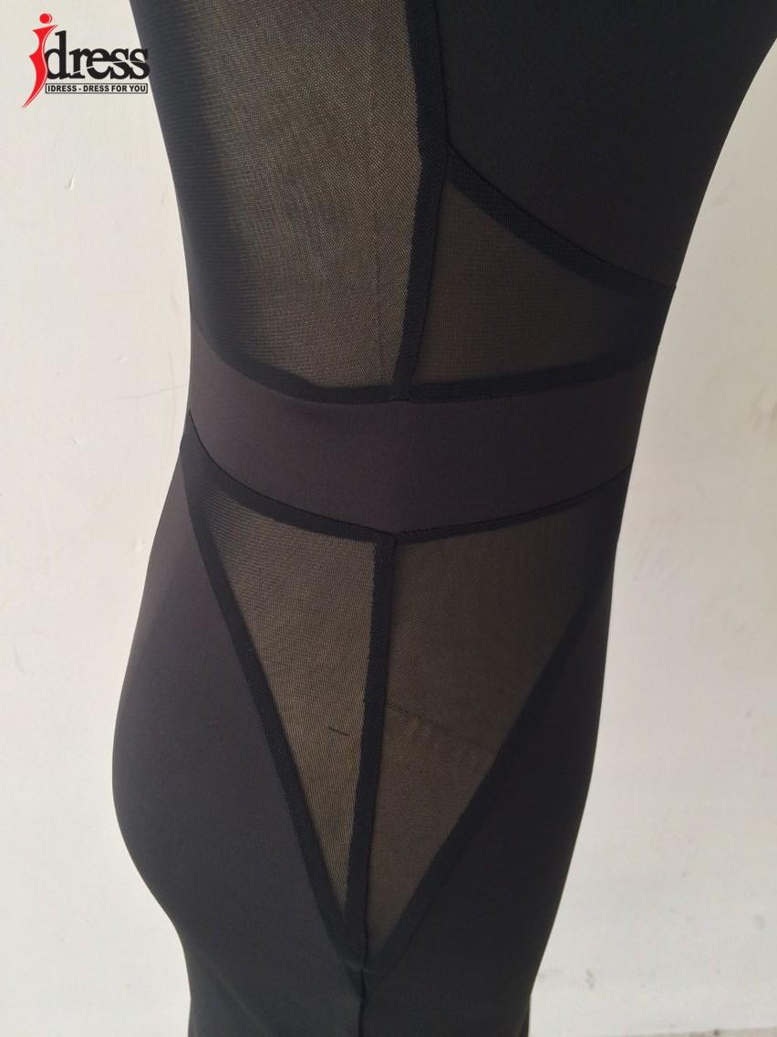 IDress 2016 Autumn Winter Women Fashion Black Mesh Patchwork Sexy Bodycon Dresses Long Sleeve Wholesale Drop Ship Vestidos (5)
