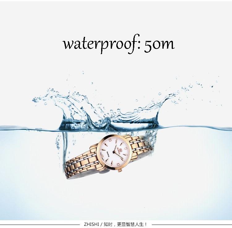 2016 топ люксовый бренд гонконг zhishi горячей продажи швейцарский механизм сапфировое зеркало relojes нержавеющей стали водонепроницаемый женщин смотреть