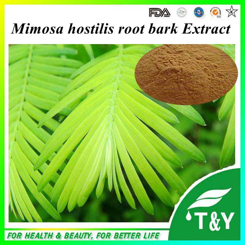 High quality Sensitive plant Herb Extract/mimosa hostilis powder/mimosa pudica powder 300g 20:1<br><br>Aliexpress