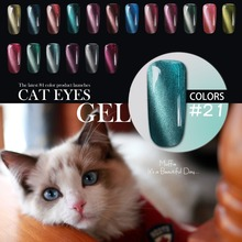 Perfect Summer Nail UV Gel Polish Newest Nail Gel Cat Eyes Gel with Magnet Stick 10ml