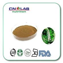 100% Nature Black Cohosh Extract/Cimicifuga Romose Root Extract 2.5% Triterpene Glycoside 200g(China (Mainland))