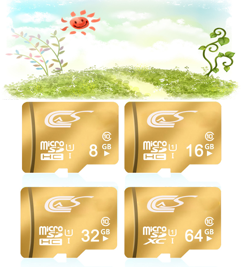 New Memory Card Micro SD Card 32GB/16GB/128g Class 10 Micro SD Card 4G c6 Golden Full Capacity Card Tachograph Default Custom(China (Mainland))