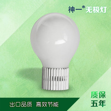 Gaoyou supply 85W Induction Lamp bulb maintenance plus coupler no strobe factory direct(China (Mainland))