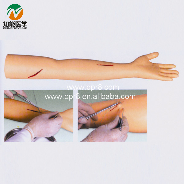 Advanced Surgical Suture Training Arm Model BIX-LF1<br><br>Aliexpress