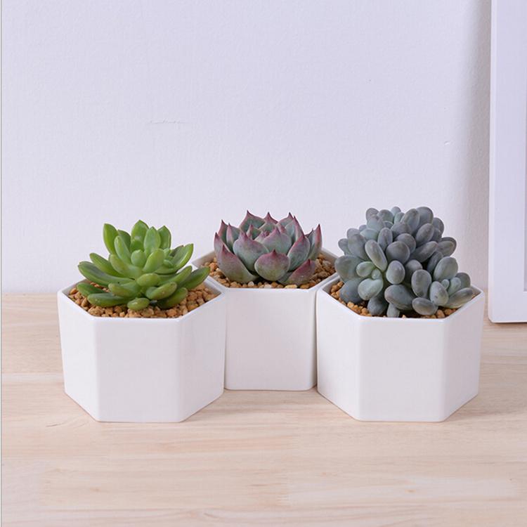 Small Hexagonal White Ceramic Flower Pot Desktop Decor