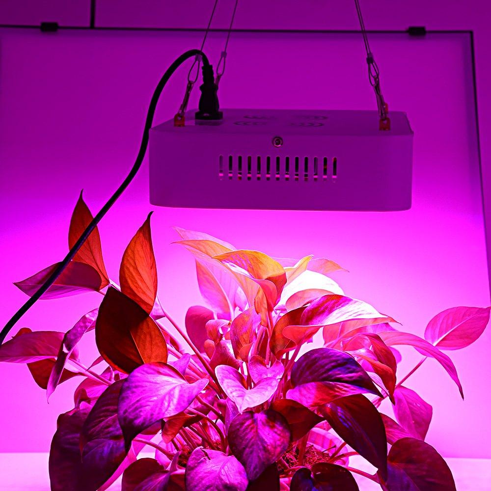 popular led grow lights lowes buy cheap led grow lights. Black Bedroom Furniture Sets. Home Design Ideas