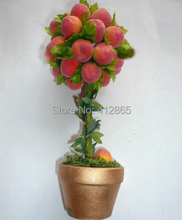 Top quality (Xinjiang) Small Potted Tree Flat Peach Seeds 10 Pcs, Everything To Gain If The king, Delicious Fruit(China (Mainland))