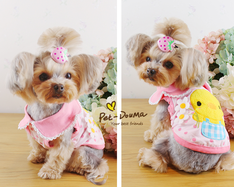 Explore Petco's selection of dog & puppy clothes, outfits & apparel. From outerwear to accessories, your dog will be looking its best for each occasion.