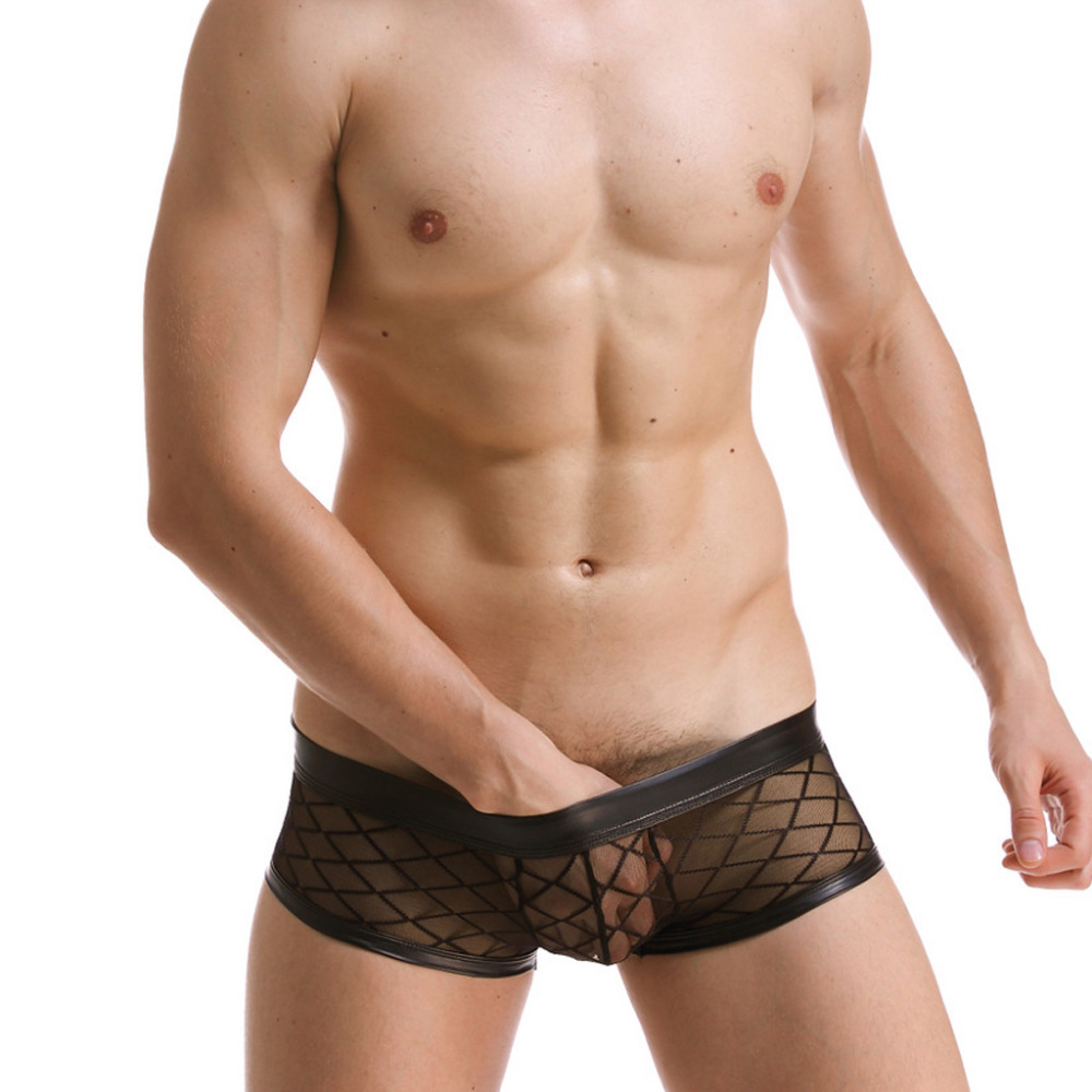 2Pcs/lot High Quality Transparent Mens Sexy Underwear Mesh Nylon Fishnet Men'S Boxer Shorts Male Underwear Men Panties Trunks 39(China (Mainland))