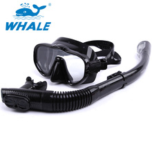 Professional Scuba Diving Mask Brand Whale Diving Mask Snorkel Set Adults Swimming Scuba Glasses Diving Tube Swim Equipment