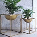 3 Types Modern Style Glass Tabletop Plant Bonsai Flower Wedding Decorative Vase With Wooden Tray Home Decoration Accessories