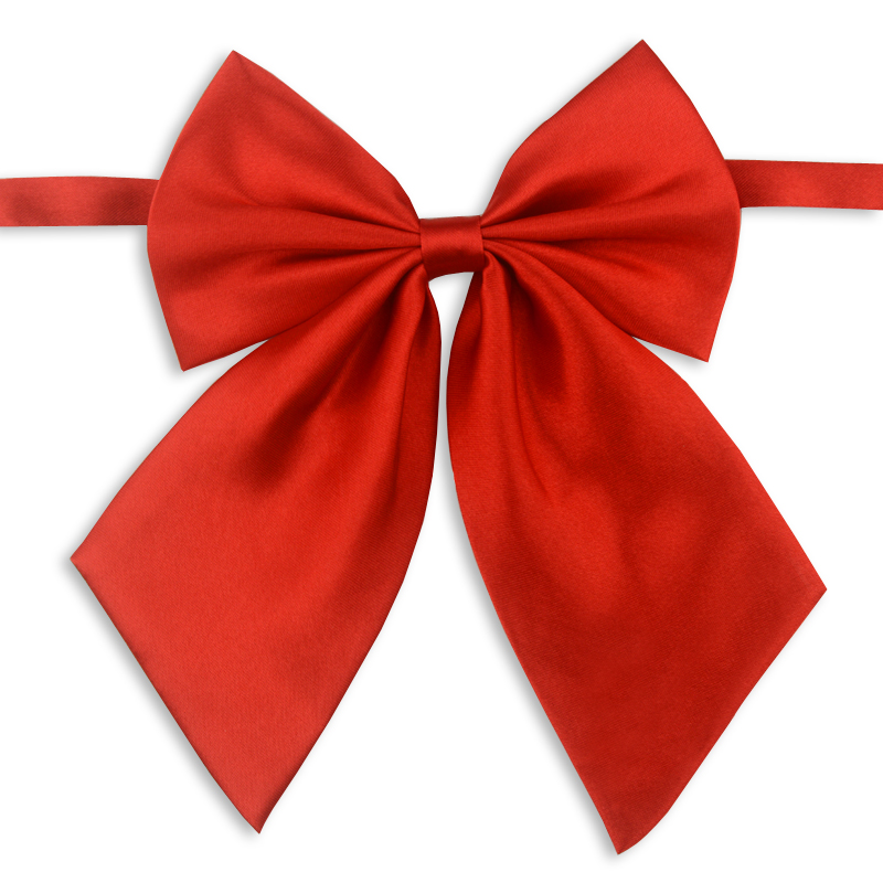 A ribbon bow tie is the perfect way to dress up a little boy! Perfect for church, holidays and weddings! Only takes about 10 minutes to make!