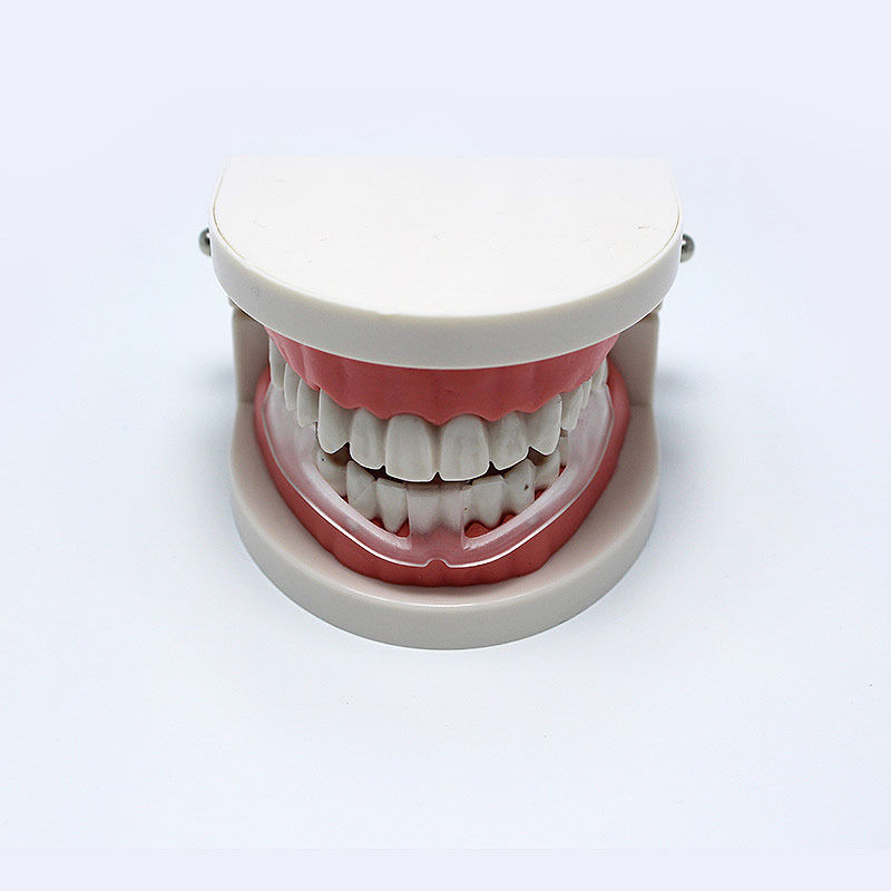 Pro DentalMouth Guard Stop Teeth Grinding Anti Snoring Bruxism Eliminate Clenching Sleep Aid Health Care  Pro DentalMouth Guard Stop Teeth Grinding Anti Snoring Bruxism Eliminate Clenching Sleep Aid Health Care  Pro DentalMouth Guard Stop Teeth Grinding Anti Snoring Bruxism Eliminate Clenching Sleep Aid Health Care  Pro DentalMouth Guard Stop Teeth Grinding Anti Snoring Bruxism Eliminate Clenching Sleep Aid Health Care  Pro DentalMouth Guard Stop Teeth Grinding Anti Snoring Bruxism Eliminate Clenching Sleep Aid Health Care