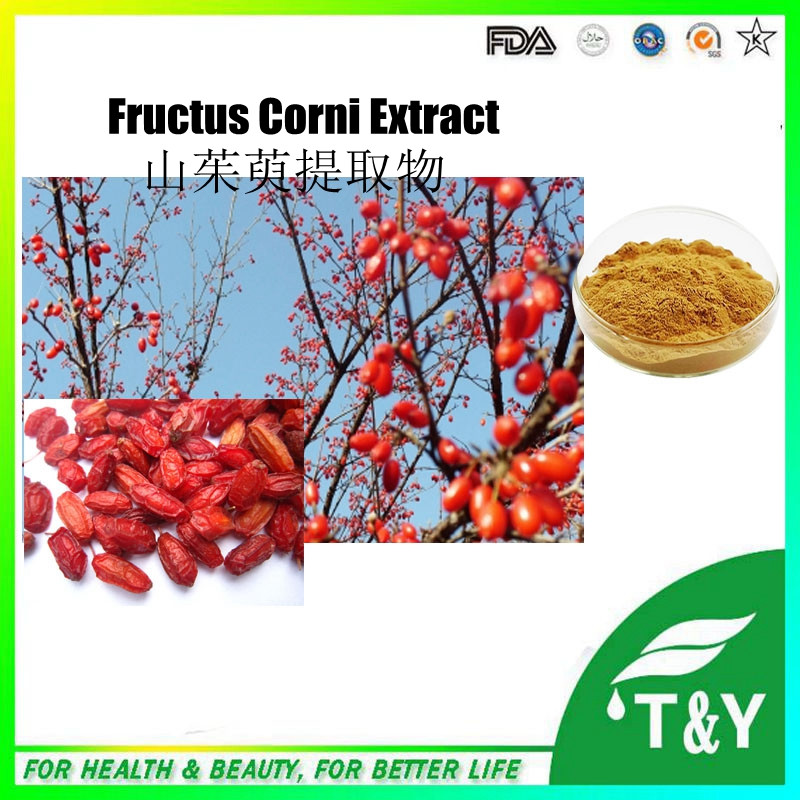 100% Natural Dogwood Extract/Cornus Officinalis Extract/Fructus Corni Extract Powder 500g/lot<br><br>Aliexpress