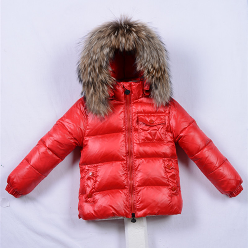 Еноты зимой картинки для детей