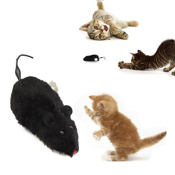 Анекдоты про компьютерную мышь - Анепедия