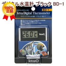 Japan Tetra Aquatic animals is special Electronic thermometer The thermometer