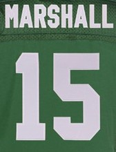 15 Brandon Marshall 22 Matt Forte 24 Darrelle Revis 87 Eric Decker 12 Joe Namath white green jersey(China (Mainland))