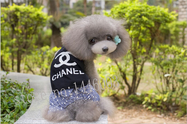 3Pcs Hot sale Fashion Brand New dog clothes Chihuahua puppy pet dog clothing pet shirt GY122(China (Mainland))