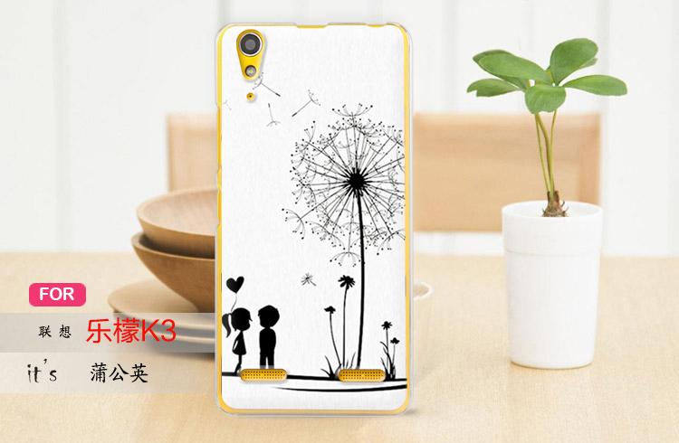 for Lenovo lemon k3 phone sets enjoyed a lush k3 following K30 -t cartoon drawing back cover to protect the hard shell of 4 g(China (Mainland))