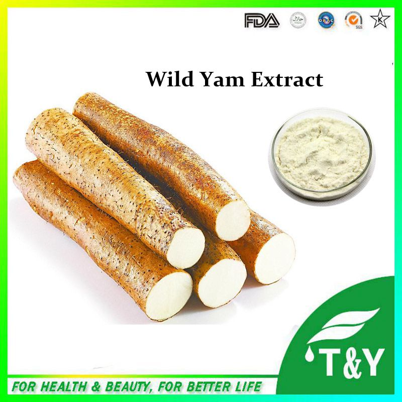 Factory supply directly Pure Natural Wild Yam Extract Diosgenine 400g/lot(China (Mainland))