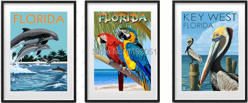 vintage style pictures posters canvas paintings animal world florida parrots dolphin birds(China (Mainland))