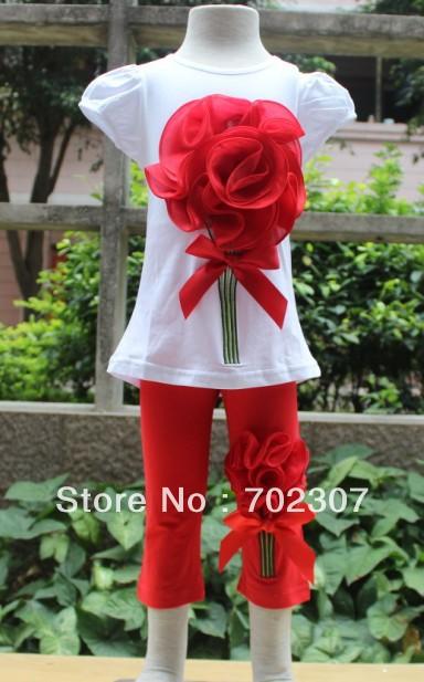 B2w2 girls summer clothing (T-shirt+Cropped Trousers) big flower children clothes girls 2pcs set 5set/lot  FS007<br><br>Aliexpress