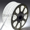 Super Brightness Waterproof IP67 60LEDs/M 110V 220V SMD 3258 led flexible strip(China (Mainland))