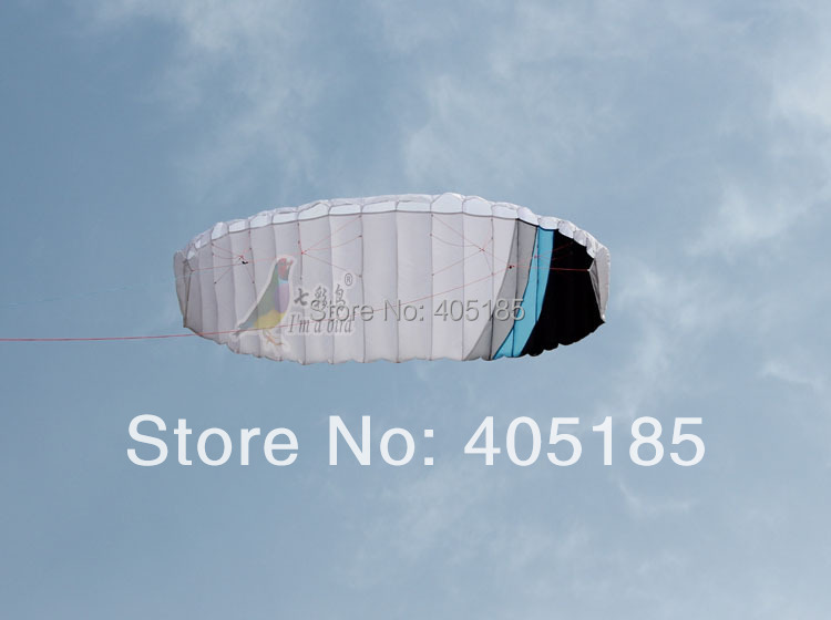 Free Shipping 4m Rainbow Dual Line Soft Stunt kite Professional 2-wire Power Kite So Beautiful Hot Sell(China (Mainland))