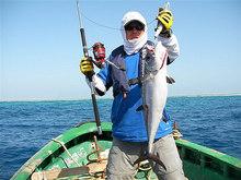 14G 8 5CM Fishing Lures Minnow Crank Bait Crankbait Bass Tackle Treble Hook bait wobblers fishing