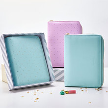 2016 New Creative Hard Leather Cover Metal Zipper Notebook Spiral Ring Binder Diary Agenda A5 A6 Mint Green Violet Pastel Color - B & Y Co.,Ltd store