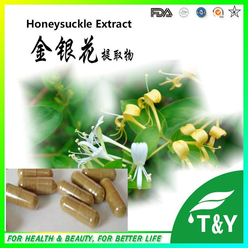 health food/Honeysuckle softgel capsule 500mg*300pcs<br><br>Aliexpress